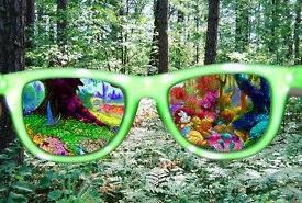 psychedelic drug effect