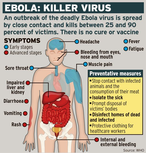 an overview of the ebola virus cause effects prevention and treatment A severe, often fatal, zoonotic infection caused by a virus of the filoviridae family (genus ) human-to-human transmission occurs via contact with body fluids from infected patients.