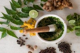 a few popular herbs