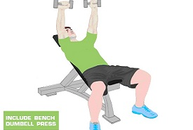bench dumbbell press